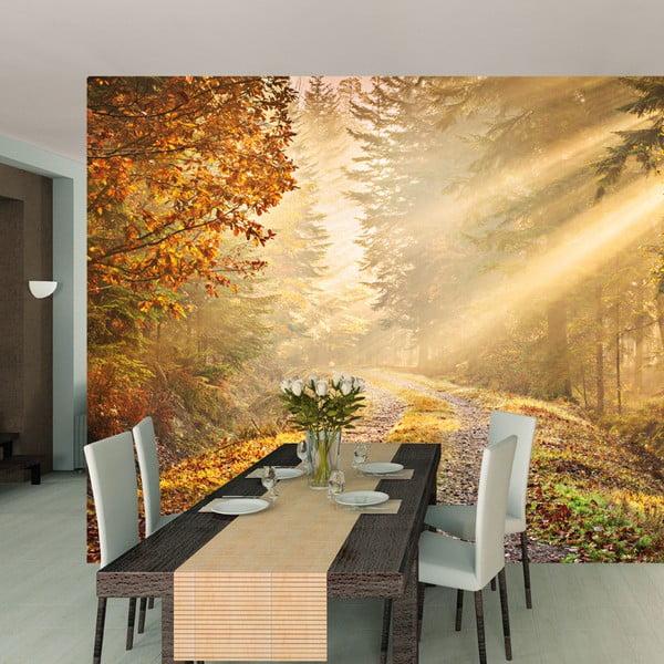 Tapeta wielkoformatowa Deep Forest, 315x232 cm