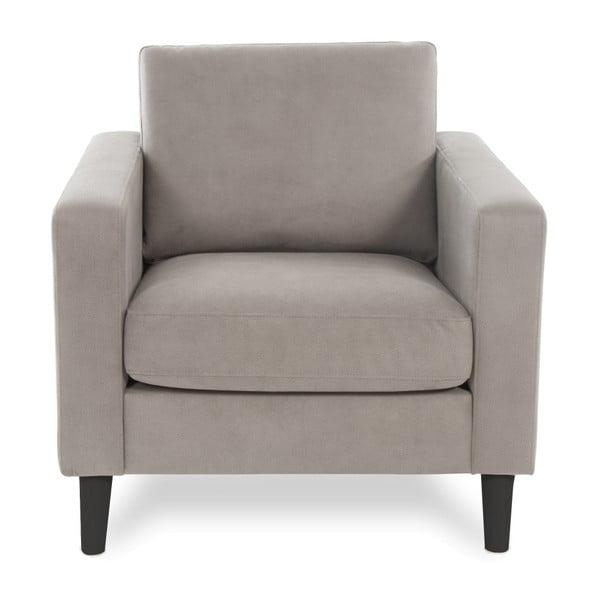 Jasnoszary fotel z czarnymi nogami Vivonita Tom