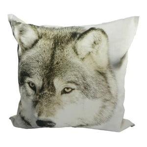 Poduszka Winter Wolf 50x50 cm