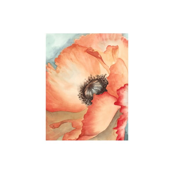 Obraz Watercolor Poppy, 50x65 cm