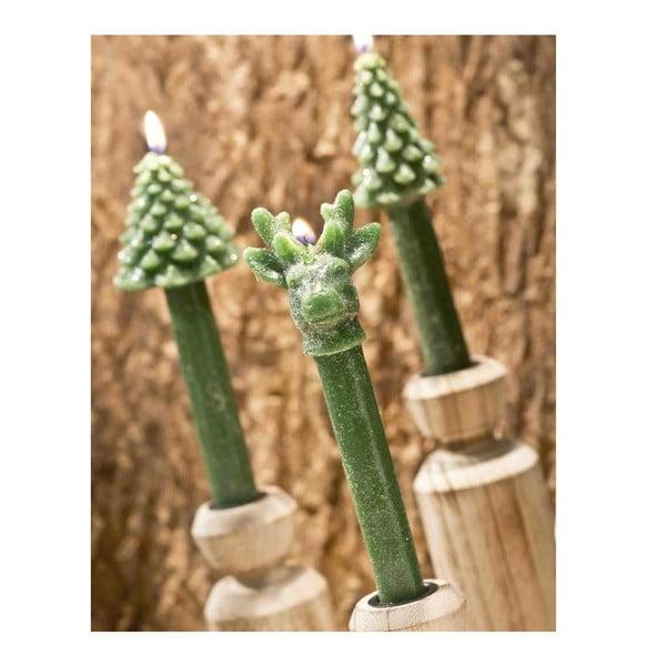 Zestaw 3 świeczek Tree Green