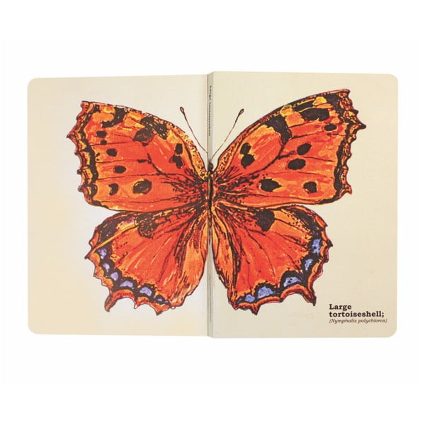 Notes Gift Republic Butterflies, rozm. A5