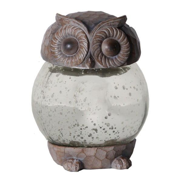 Lampion Solar Energy Owl