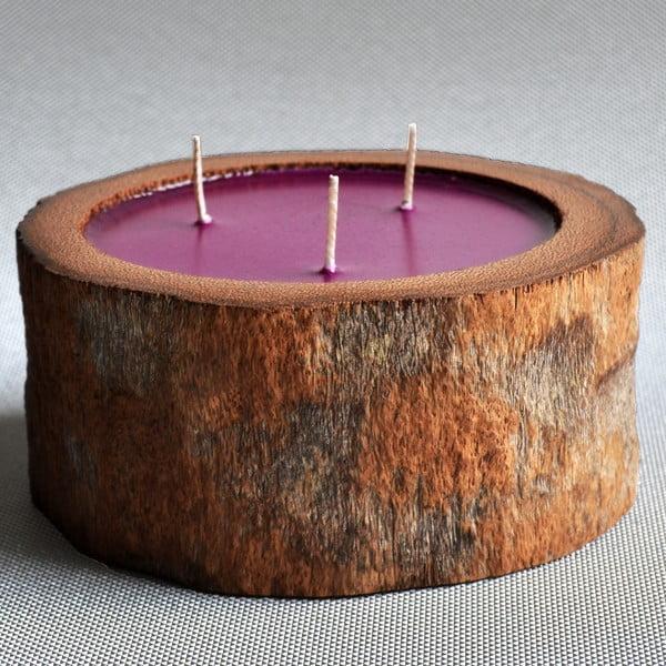 Palmowa świeczka Legno o zapachu białego piżma, 60 godzin palenia