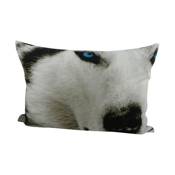 Poduszka Sepia Wolf 50x35 cm