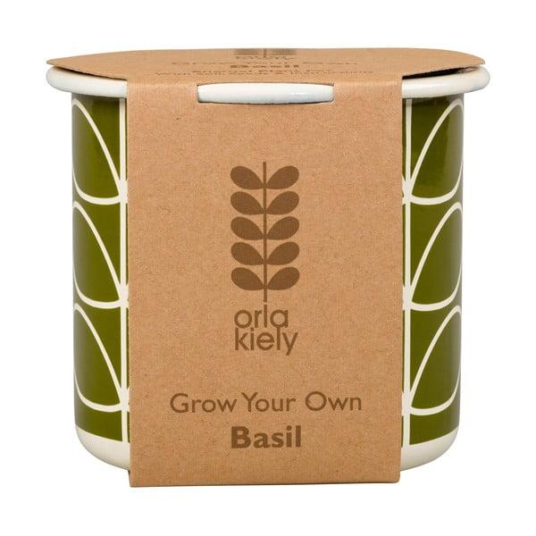 Zestaw doniczki z nasionami Orla Kiely Grow Your Own, bazylia