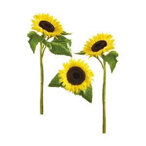 Naklejka dekoracyjna Eurographics Sun Flowers