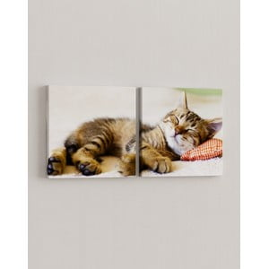 Zestaw 2 obrazów Koci relaks