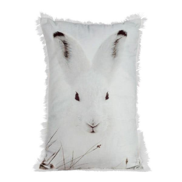 Poduszka Rabbit Velvet, 30x45 cm