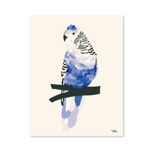 Plakat Michelle Carlslund Blue Bird, 50x70cm