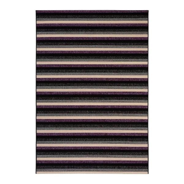 Dywan Veranda Purple, 80x230 cm