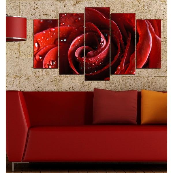 5-częściowy obraz Czerwona róża