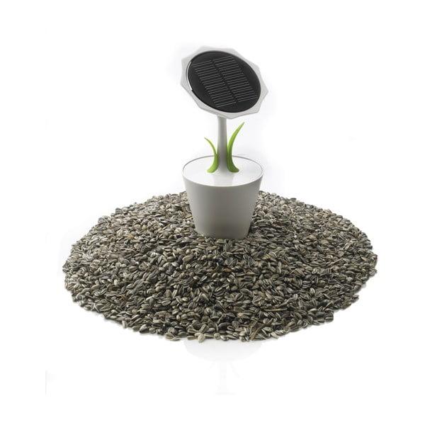 Ładowarka słoneczna XD Design Sunflower