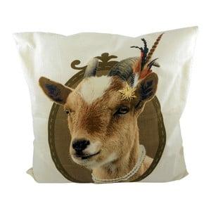 Poduszka Alm Goat 50x50 cm