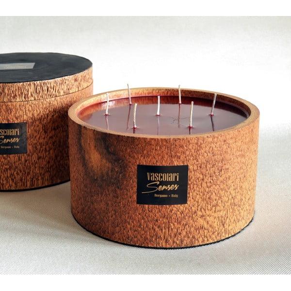 Palmowa świeczka Palm Legno o zapachu owoców egzotycznych, 240 godz.