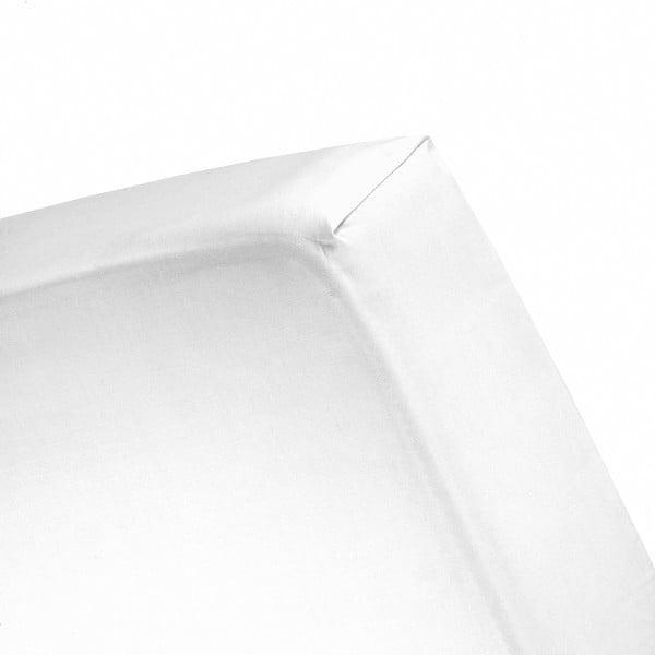 Prześcieradło Cinderella White, 140x200 cm