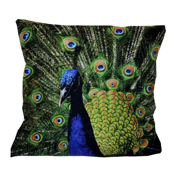 Poduszka Animals Peacock, 42x42 cm