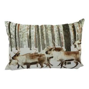 Poduszka Winter Reindeer 60x40 cm