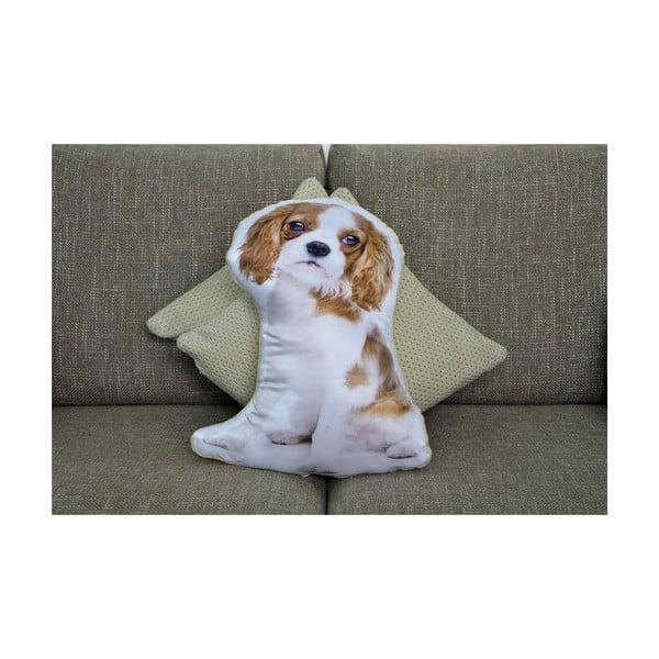 Poduszeczka Adorable Cushions