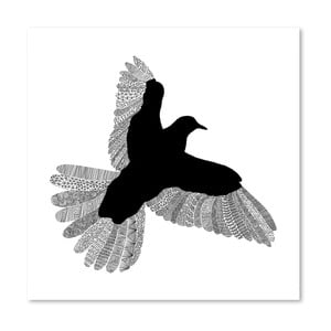 Plakat Bird White, 30x30 cm