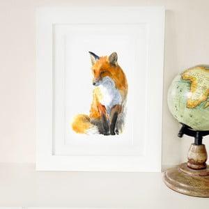 Plakat Fox A3