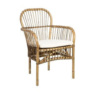 Brązowy fotel z rattanu Denzzo Alpheratz