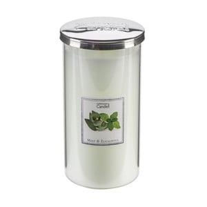 Świeczka zapachowa Mint & Eucalyptus Talll, czas palenia 70 godzin