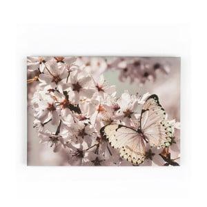 Obraz Graham & Brown Butterfly Branch, 70x50cm