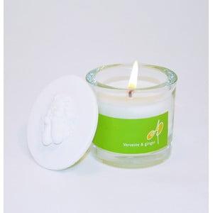 Świeczka zapachowa THD Fragnances, werbena i imbir