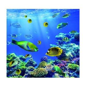 Fototapeta Underwater World, 300x280 cm