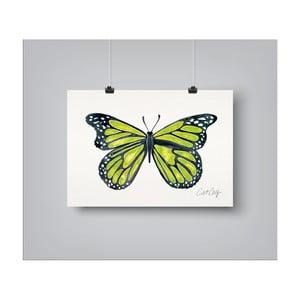 Plakat Americanflat Butterfly, 30x42 cm