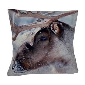 Poduszka Animals Reindeer, 42x42 cm
