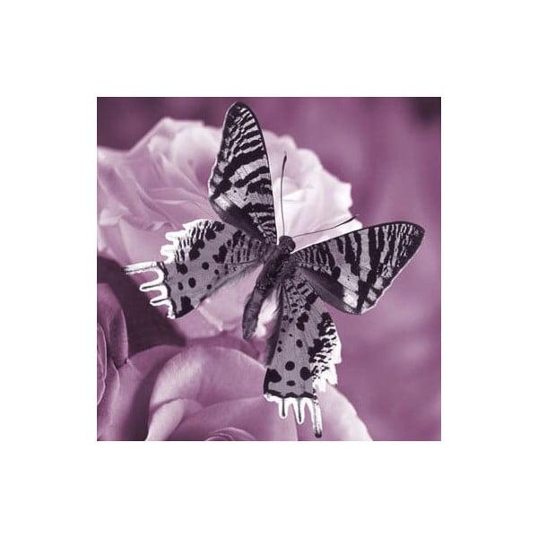 Obraz na szkle Motyl I, 30x30 cm
