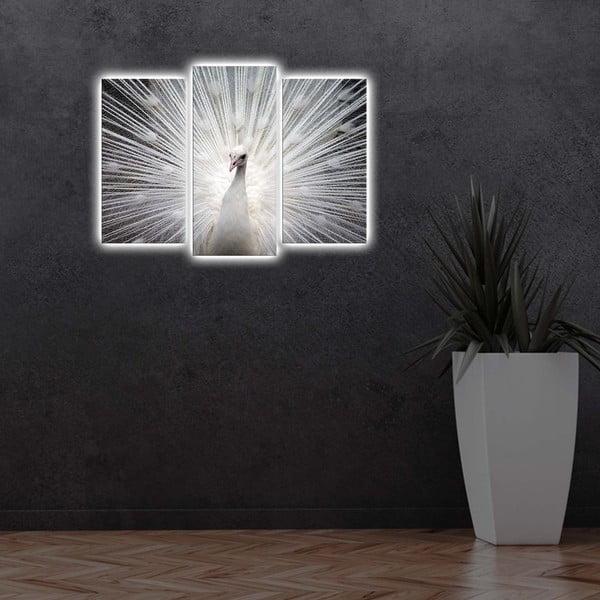 Podświetlany wieloczęściowy obraz Peacock, 66x45 cm